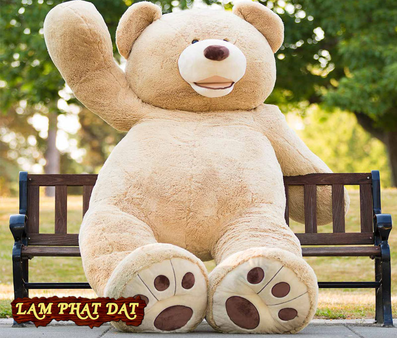Shop Gấu Teddy Costco